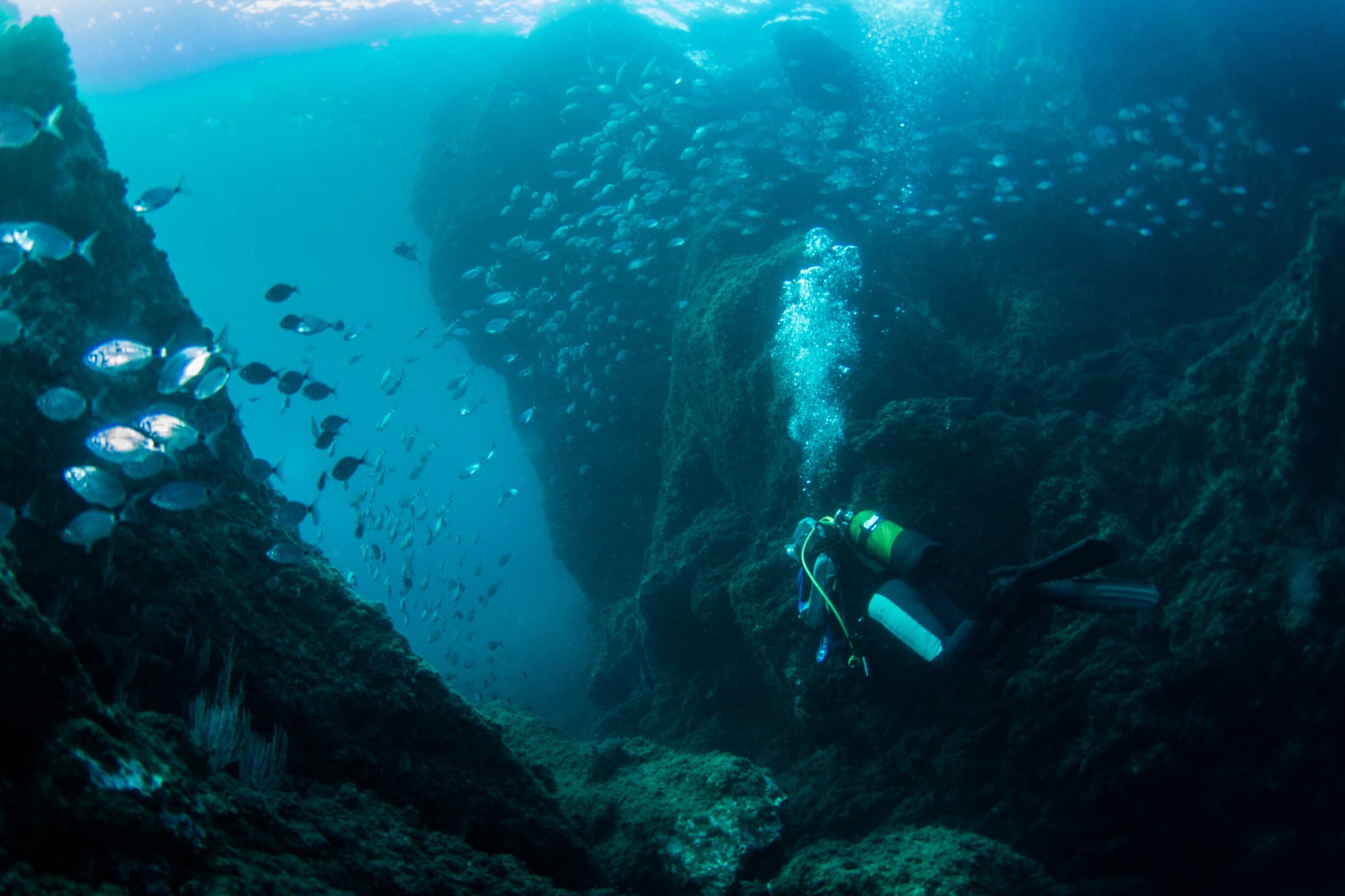 archipel taille reelle (86 sur 112)